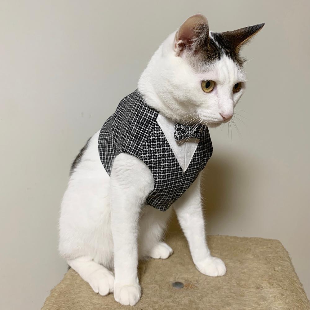 猫用ベスト チョッキタイプ・チュチュタイプ